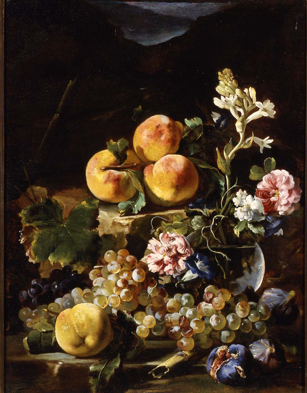 Light in the art and science of still life