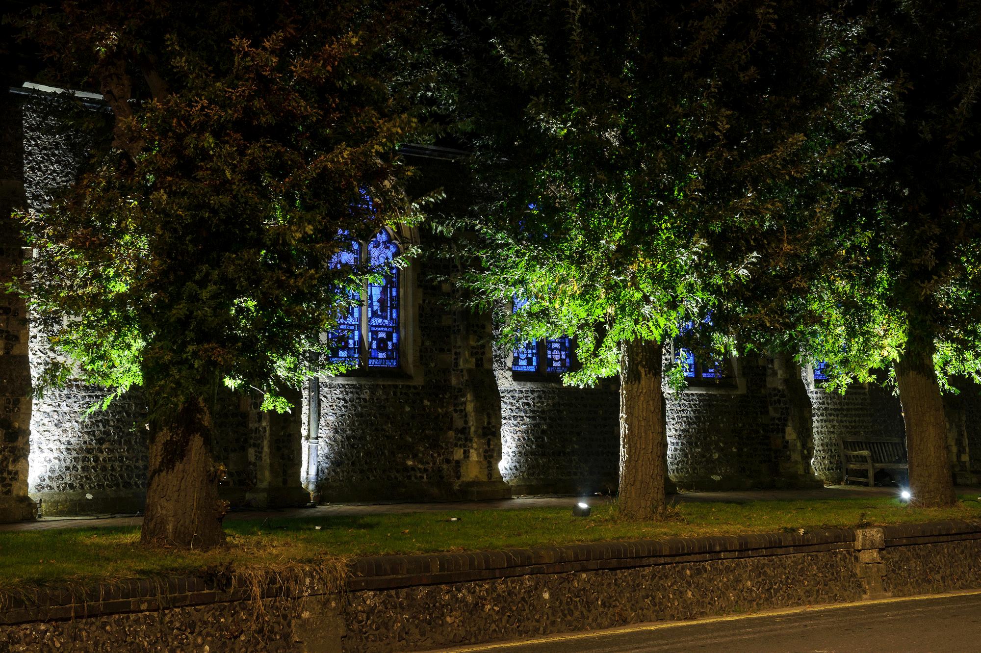 Lewes Light - Festival of Light